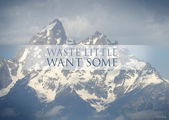 Waste Little Want Some