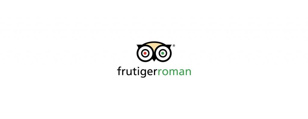 Frutiger Roman